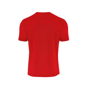 COVOS heren shirt Everton rood back