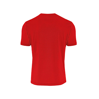 COVOS heren shirt Everton rood back